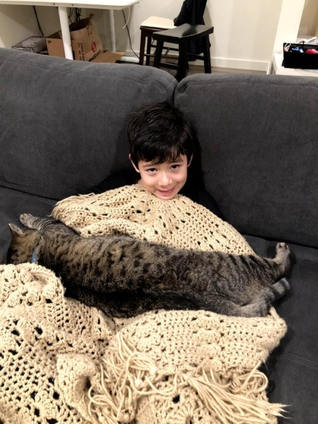 a young child sitting on a couch, with a blanket over most of his body and a very large cat laying on his lap