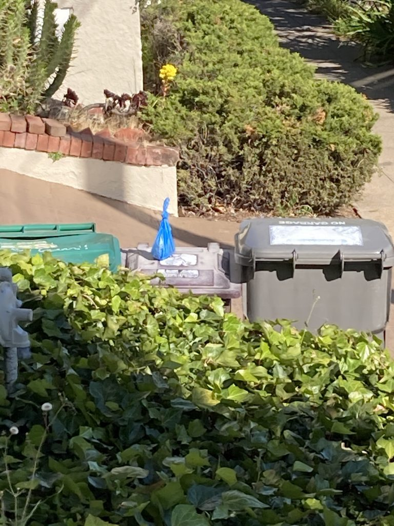 a green recycling bin next to a smaller trash bin, and a larger gray bin next to the middle one. on top of the middle bin is a tied back of dog poop