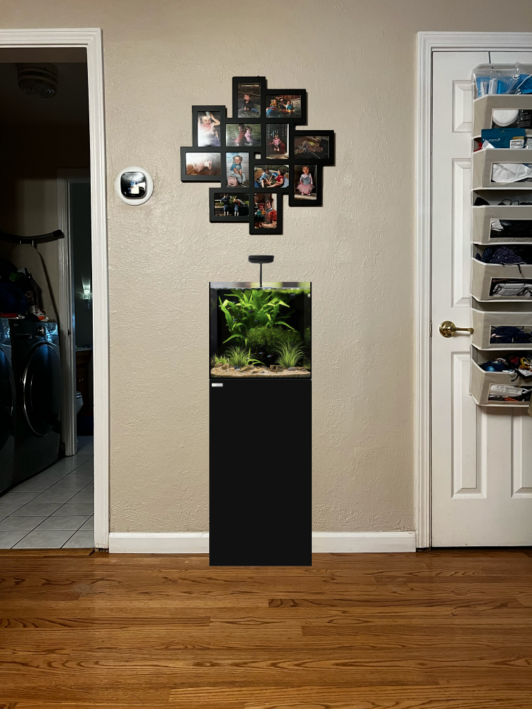A rendering of a hallway space with a 20 gallon fish tank in it