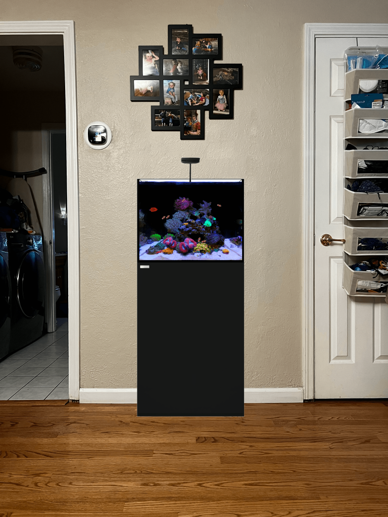 A rendering of a hallway space with a 35 gallon fish tank in it
